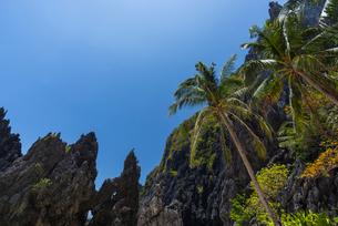 パラワン島 エルニドの写真素材 [FYI01804271]