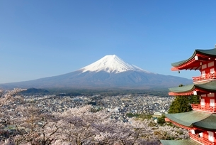 山梨県 新倉山浅間公園の桜と富士山と忠霊塔の写真素材 [FYI01804295]
