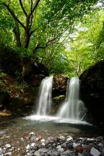 山梨県 新緑の鐘山の滝の写真素材 [FYI01804302]