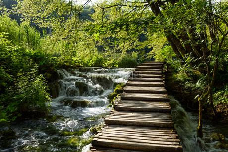 プリトヴィツェ湖群国立公園の写真素材 [FYI01804371]