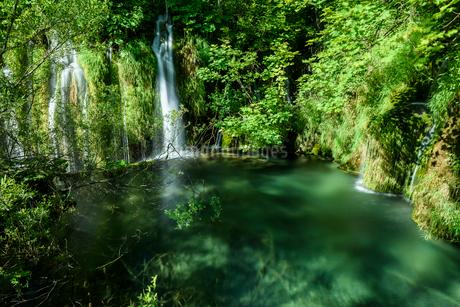 プリトヴィツェ湖群国立公園の写真素材 [FYI01804402]