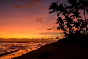ハワイ マウイ島 カアナパリビーチ トロピカルな夕景と釣り人の写真素材 [FYI01804430]