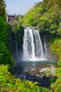 静岡県 新緑の音止の滝の写真素材 [FYI01804484]
