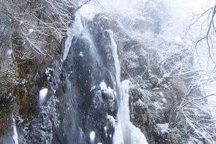 駒ヶ滝 冬景の写真素材 [FYI01804494]