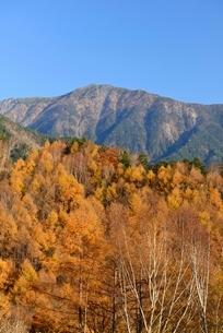 長野県 秋の鳥倉林道より望む小河内岳の写真素材 [FYI01804588]