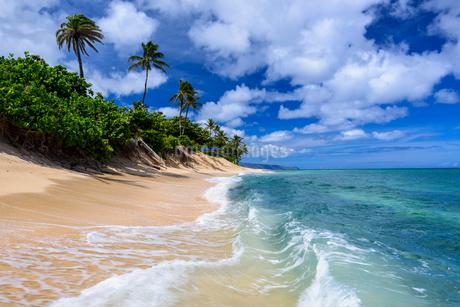 ハワイ オアフ島 サンセットビーチの写真素材 [FYI01804706]