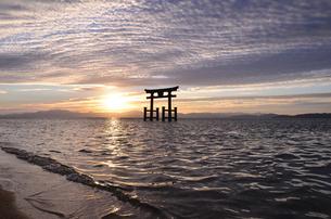 白髭神社の夜明けの写真素材 [FYI01804741]