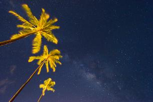 ハワイ マウイ島 カアナパリビーチ ヤシの木と星空の写真素材 [FYI01804755]