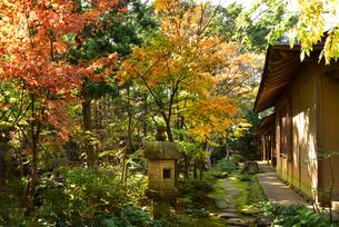 松雲山荘紅葉の印象の写真素材 [FYI01804943]