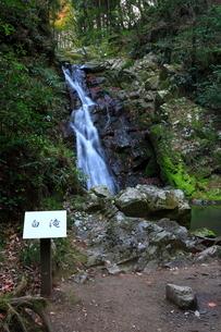 摂津峡の白滝の写真素材 [FYI01805435]