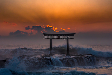 夜明けの鳥居と海の写真素材 [FYI01805617]