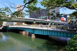堂島川と鉾流橋の写真素材 [FYI01805782]