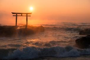 夜明けの鳥居と海の写真素材 [FYI01805783]