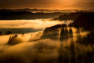 夜明けの棚田と雲海の写真素材 [FYI01805784]