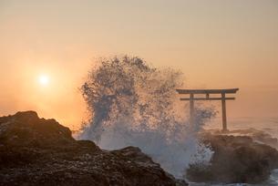 夜明けの鳥居と海の写真素材 [FYI01805792]
