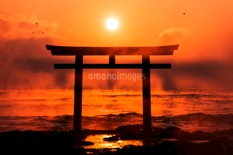 夜明けの鳥居と海の写真素材 [FYI01805794]