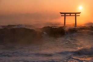 夜明けの鳥居と海の写真素材 [FYI01805858]