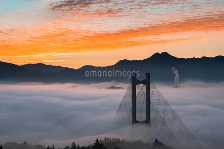 秩父公園橋と雲海の写真素材 [FYI01805956]