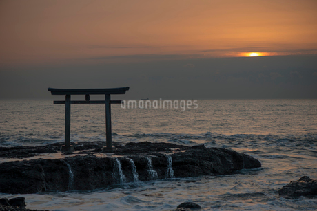 神磯の鳥居と夜明けの写真素材 [FYI01806026]