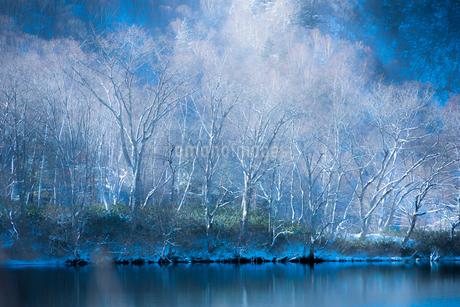 霧氷の写真素材 [FYI01806038]