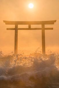 夜明けの鳥居と海の写真素材 [FYI01806117]