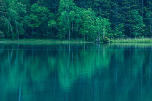 木々の水面への映り込みの写真素材 [FYI01806225]