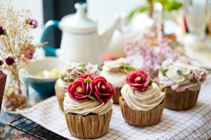 カップケーキの写真素材 [FYI01806252]