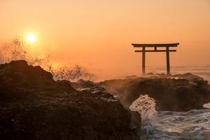 夜明けの鳥居と海の写真素材 [FYI01806266]