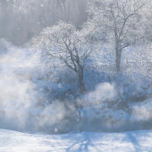 霧氷と川霧の写真素材 [FYI01806373]