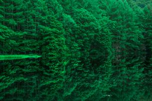 御射鹿池 新緑と映り込みの写真素材 [FYI01806451]