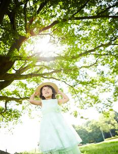 木の下で帽子をおさえる女の子の写真素材 [FYI01806500]