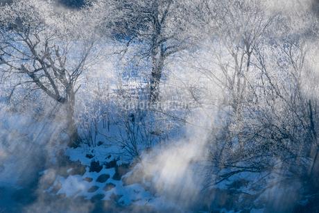 霧氷と川霧の写真素材 [FYI01806537]
