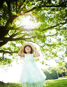 木の下で帽子をおさえる女の子の写真素材 [FYI01806919]
