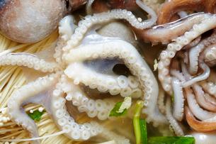 海鮮鍋の写真素材 [FYI01806982]