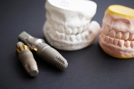 歯型の写真素材 [FYI01807343]