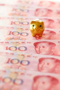 中国人民元紙幣と豚の置物の写真素材 [FYI01807396]