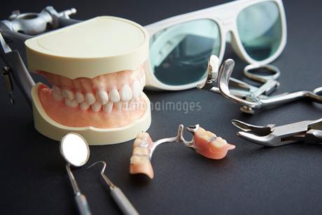 歯の模型と歯科器具の写真素材 [FYI01807411]