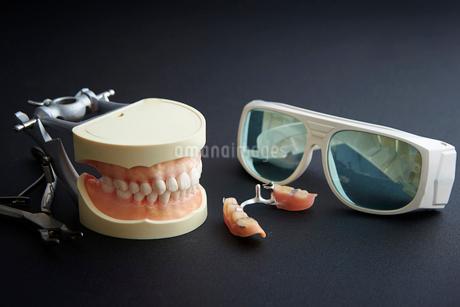 歯の模型と入れ歯の写真素材 [FYI01807454]