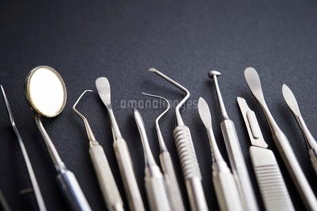 歯科器具の写真素材 [FYI01807495]