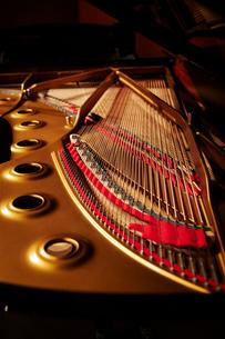 グランドピアノの写真素材 [FYI01808373]