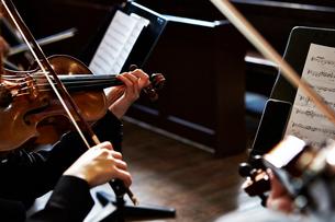 バイオリン奏者の写真素材 [FYI01808976]