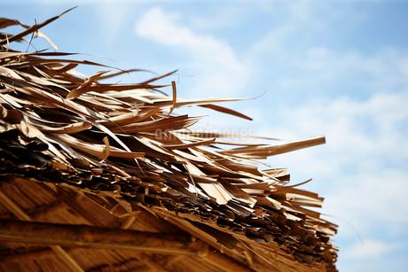 ヤシの葉の屋根の写真素材 [FYI01809158]