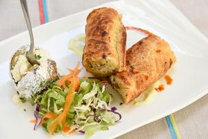 肉と野菜のパイ包みの写真素材 [FYI01809452]