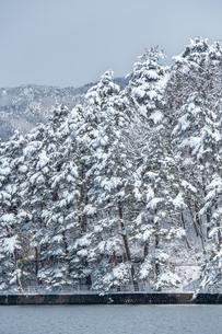 長野県大町市 木崎湖の雪景色の写真素材 [FYI01809788]