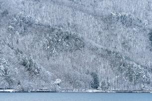 長野県大町市 木崎湖の雪景色の写真素材 [FYI01809820]