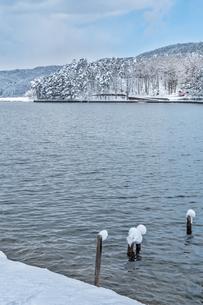 長野県大町市 木崎湖の雪景色の写真素材 [FYI01809889]