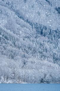 長野県大町市 木崎湖の雪景色の写真素材 [FYI01809922]