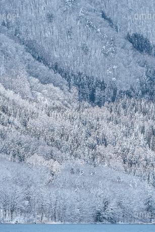 長野県大町市 木崎湖の雪景色の写真素材 [FYI01810009]