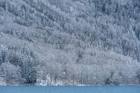 長野県大町市 木崎湖の雪景色の写真素材 [FYI01810026]