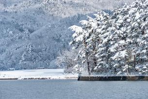 長野県大町市 木崎湖の雪景色の写真素材 [FYI01810038]